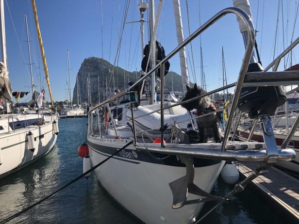 GibraltarBuster